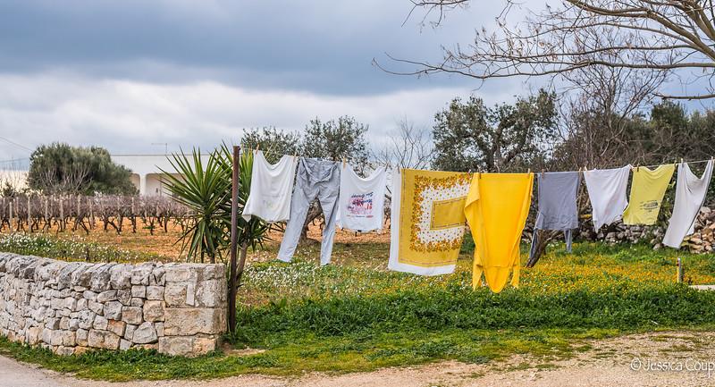 Yellow Laundry/Yellow Flowers