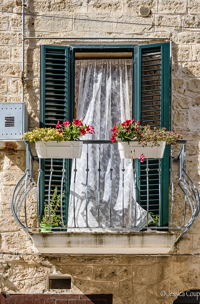 Green Shutters and Pink Flowers