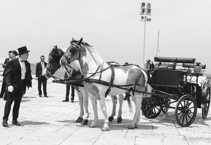 Trani Wedding Tradition