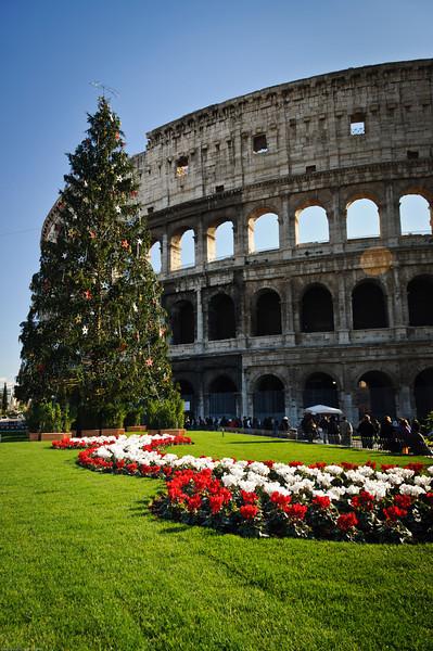 Colosseum at Christmas