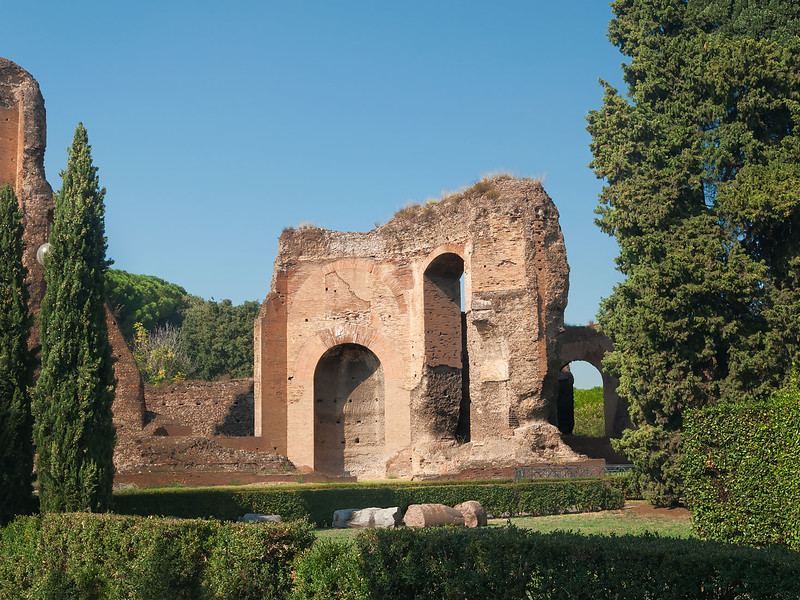 Ruins Framed by Foliage. Terme Caracalla