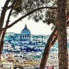 """Saintly Trees"" - Roma"