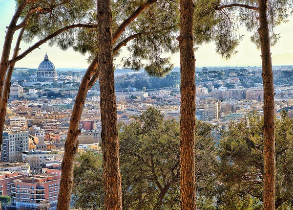 """Peter Through Pines"" - Roma"