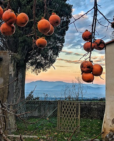 """""""Cachi and Mountains"""" - S. Francesco ai Cappuccini - Frascati, Italia"""