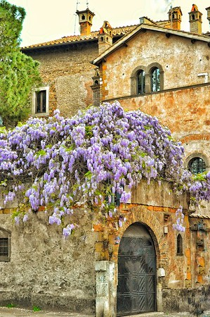 """""""Trastevere Spring - Trastevere Primavera"""" - Roma"""