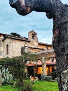"""""""S. Francesco ai Cappuccini"""" - Frascati, Italia"""