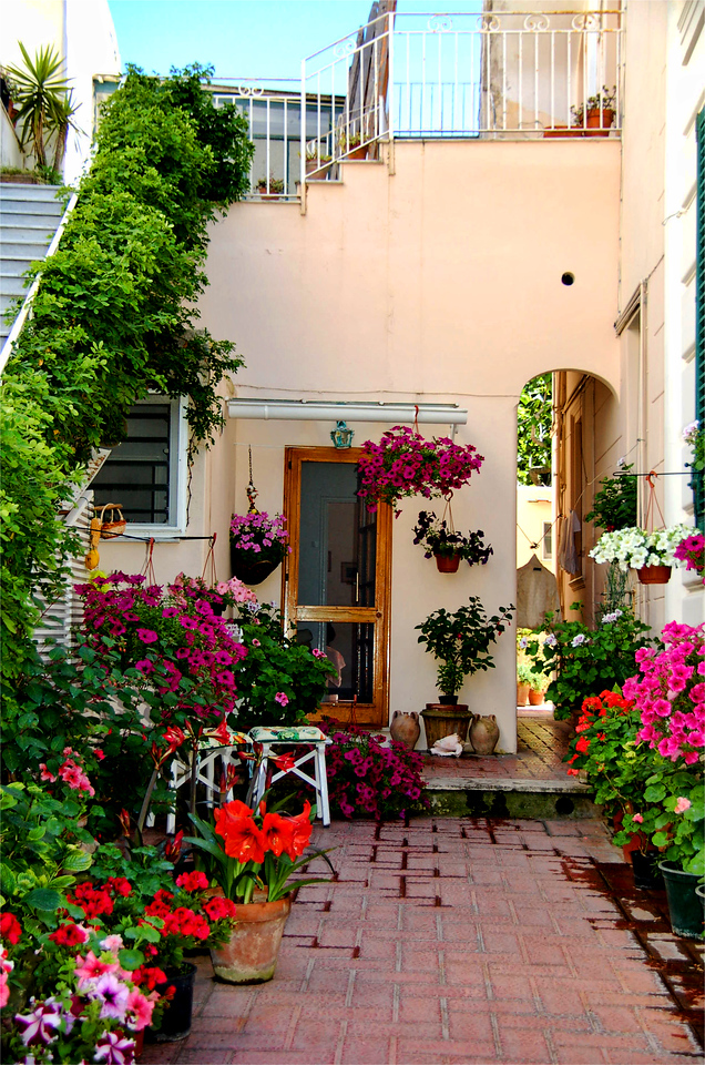 Colorful patio garden