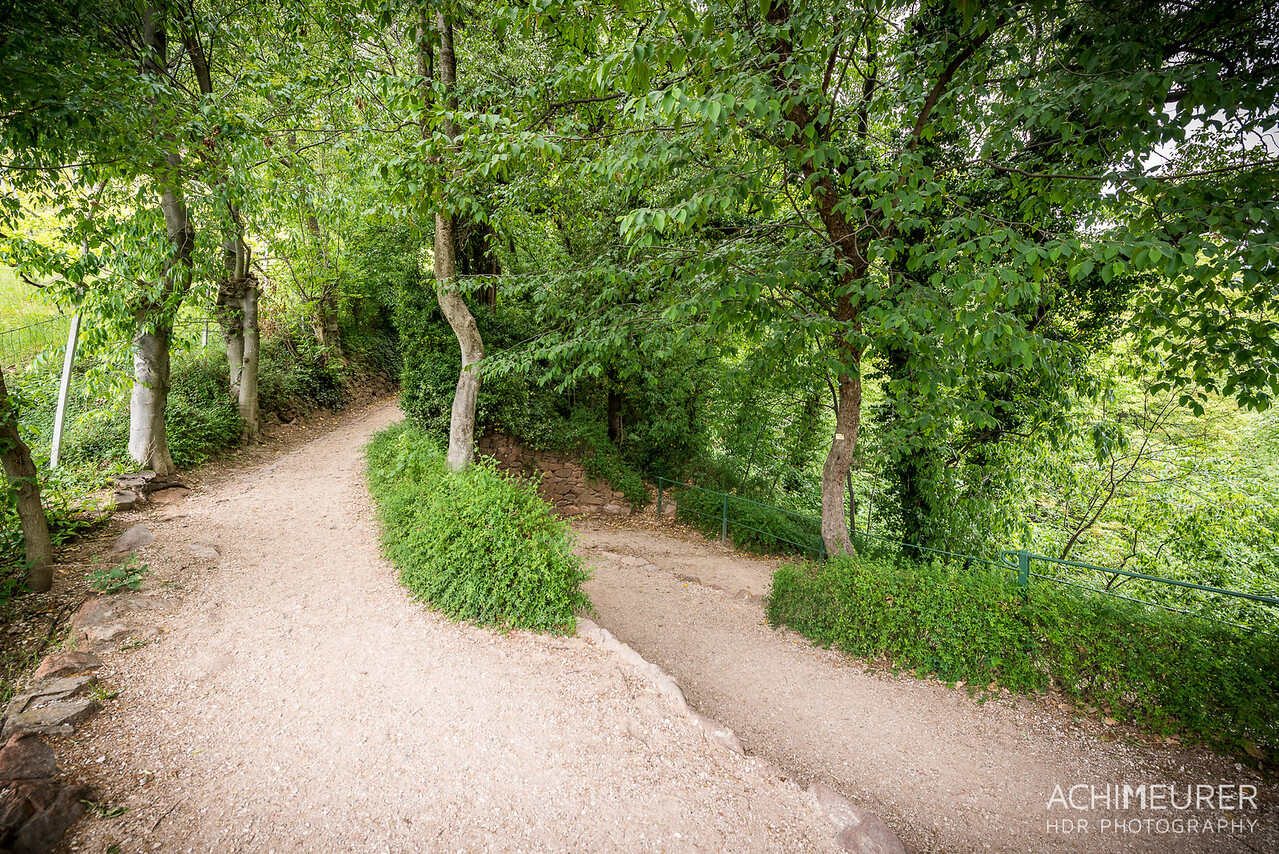 Suedtirol-Sueden-Bozen-Gunschna-Promenade-Wanderweg_0545