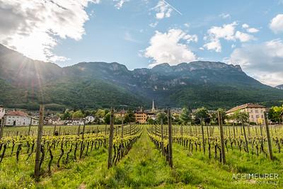 Suedtirol-Sueden-Weinstrasse-Kaltern-Ansichten_9759