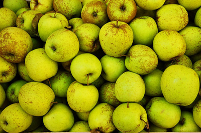Tarquinia_Green-Apples_D3S0137