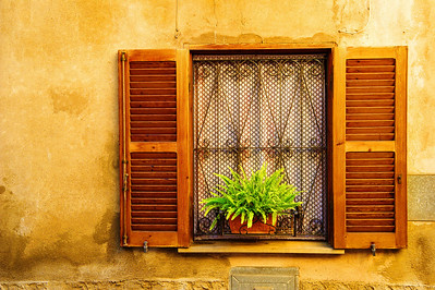 Tarquinia_Window fern-plant shutters_D3S0148
