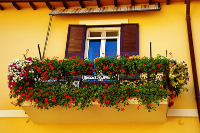 Tarquinia_Window-flowers-shtters-awning_D3S0146