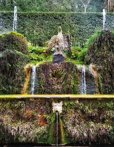 """""""Damp Eagle"""" - Villa d'Este Gardens - Tivoli"""