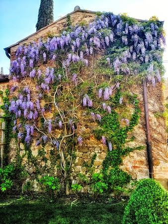 """""""Castello Banfi"""" - Toscana"""