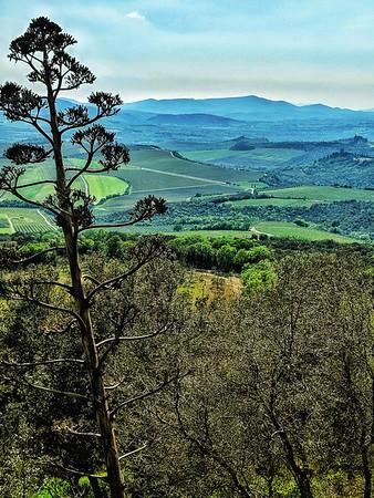 """Vista Sant'Angelo"" - Toscana - Italia"