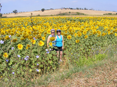 Sisters-in-law in the sunflowers