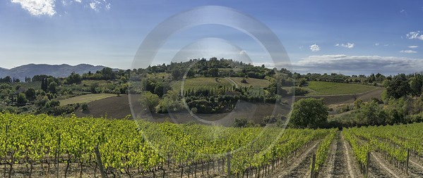 Casole D Elsa Chianti Tuscany Winery Panoramic Viepoint Country Road Photo Fine Art - 022824 - 14-09-2017 - 16442x6944 Pixel