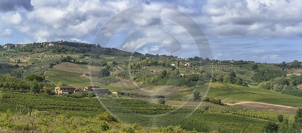 Castelluccio Tuscany Winery Panoramic Viepoint Lookout Hill Autumn Senic Art Prints Fine Arts Park - 022859 - 13-09-2017 - 18339x8100 Pixel