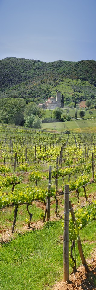 Castelnuovo Dell Abate Tuscany Italy Toscana Italien Winery Photo Fine Art Color River Stock - 013021 - 17-05-2012 - 4158x12563 Pixel