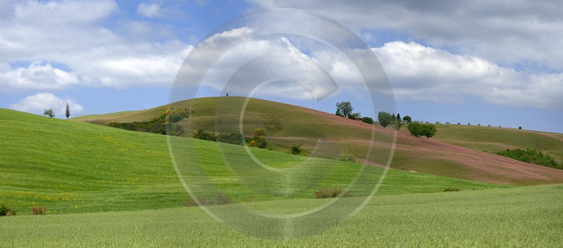 Castiglione Orcia Hill Huegel Tuscany Italy Toscana Italien Prints For Sale - 012919 - 14-05-2012 - 11080x4872 Pixel