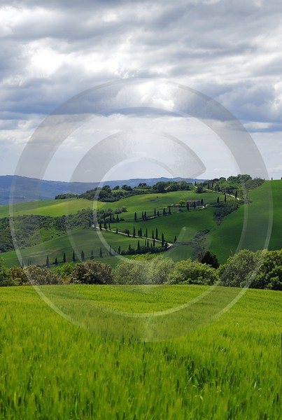 La Foce Tuscany Italy Toscana Italien Spring Fruehling Rock Beach Art Printing Images - 013971 - 18-05-2013 - 6802x10126 Pixel