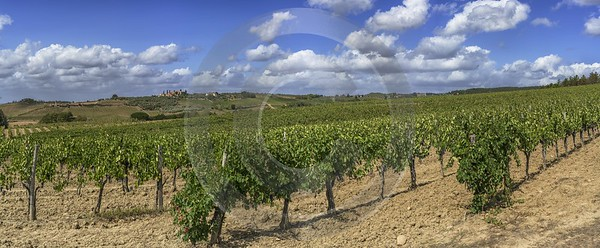 La Strolla Tuscany Winery Panoramic Viepoint Lookout Hill Art Printing Fine Art Photography Gallery - 022869 - 12-09-2017 - 23502x9697 Pixel