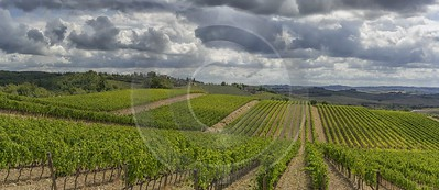 Lilliano Chianti Tuscany Winery Panoramic Viepoint Lookout Hill River What Is Fine Art Photography - 022818 - 15-09-2017 - 18190x7883 Pixel