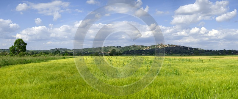 Lucignano Tuscany Italy Toscana Italien Spring Fruehling Scenic Fine Art Printing Shoreline River - 012613 - 15-05-2012 - 11511x4783 Pixel