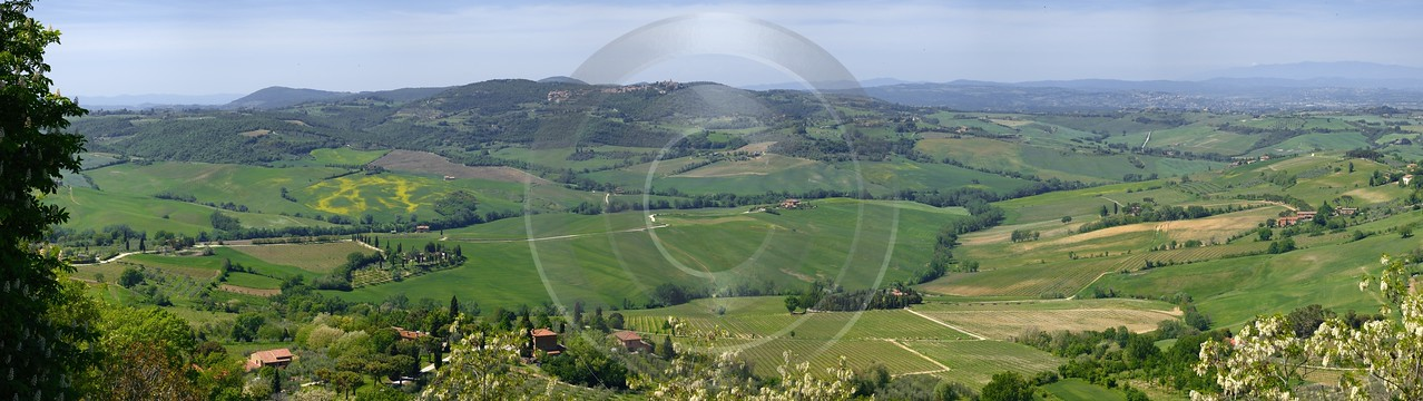 Montepulciano Tuscany Italy Toscana Italien Spring Fruehling Scenic Fine Art Forest Art Printing - 012854 - 12-05-2012 - 16858x4744 Pixel