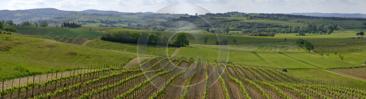 Montepulciano Tuscany Italy Toscana Italien Spring Fruehling Scenic Outlook - 012528 - 14-05-2012 - 16204x4375 Pixel