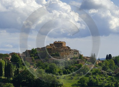 Montisi Tuscany Italy Toscana Italien Spring Fruehling Scenic Coast Fine Art Photography Prints - 013135 - 23-05-2013 - 7389x5445 Pixel