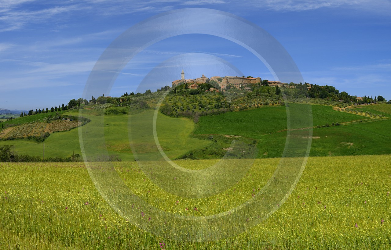 Pienza Tuscany Italy Toscana Italien Spring Fruehling Scenic Leave Fine Art Photography Galleries - 014119 - 22-05-2013 - 16777x10749 Pixel