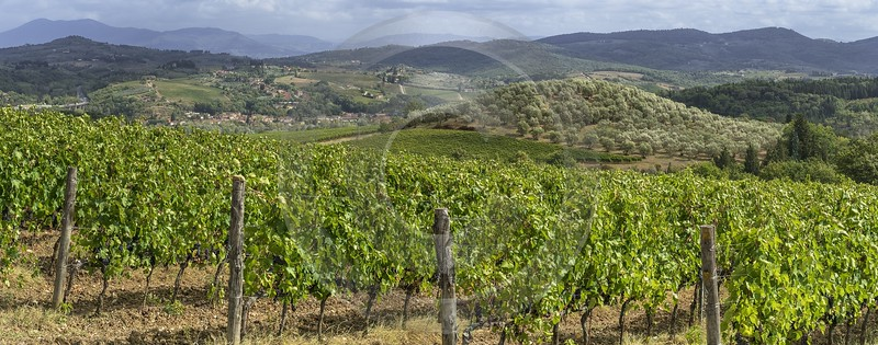 San Donato A Livizzano Tuscany Winery Panoramic Viepoint Outlook Mountain Art Prints For Sale - 022879 - 12-09-2017 - 19636x7723 Pixel