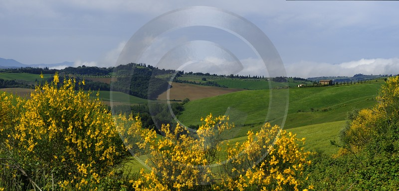 San Giovanni Asso Tuscany Italy Toscana Italien Spring Order Art Prints Stock Images Country Road - 014112 - 22-05-2013 - 16629x7976 Pixel