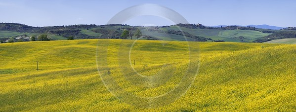 San Quirico Orcia Hill Huegel Tuscany Italy Toscana Stock Leave Famous Fine Art Photographers - 013033 - 17-05-2012 - 10809x4088 Pixel