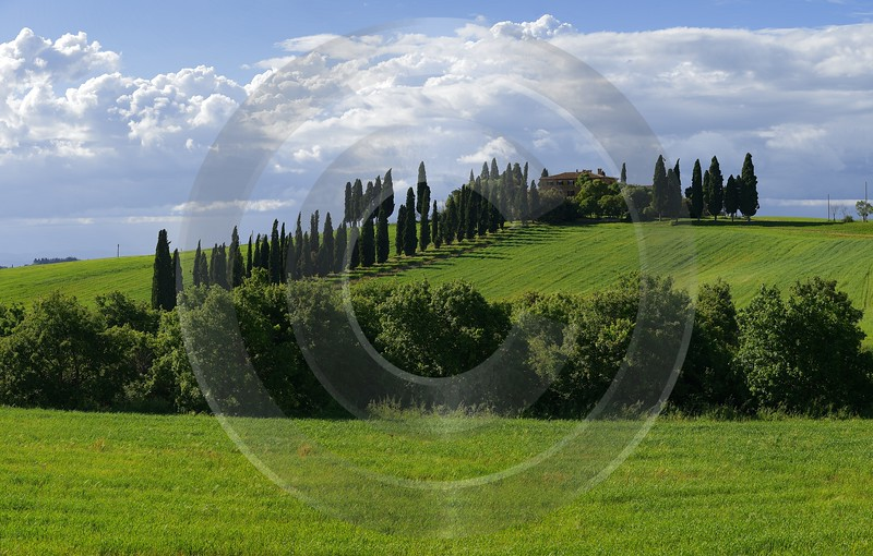 San Quirico Orcia Tuscany Italy Toscana Italien Spring Art Prints For Sale Lake - 014046 - 19-05-2013 - 11050x7051 Pixel