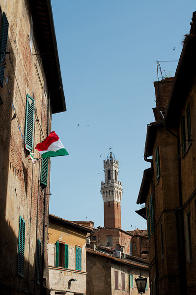 View of Siena's Torre del Mangia from the outskirts of the city