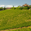 Gaiole in Chianti Countryside