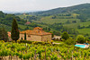 A view of the rural Tuscan countryside in Tuscany, Itlay.