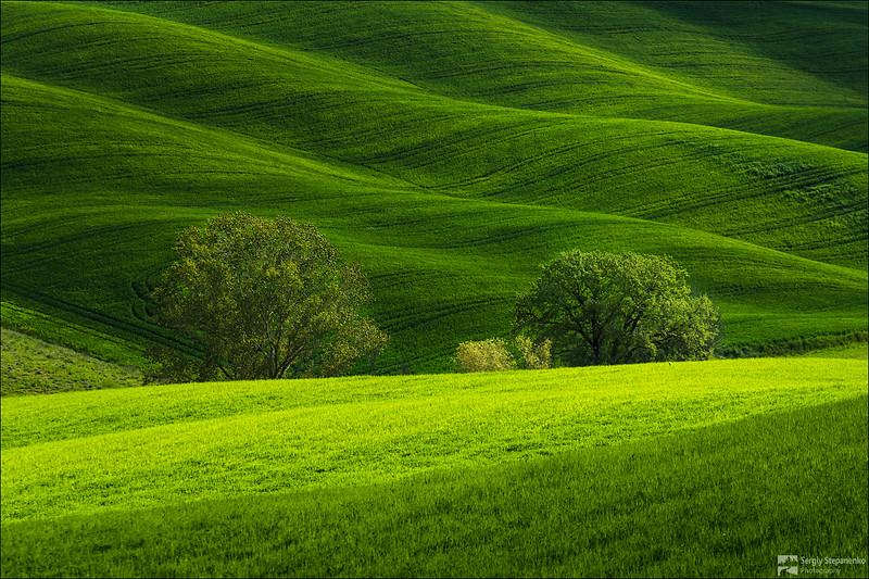Somewhere in Tuscany | Где-то в Тоскане