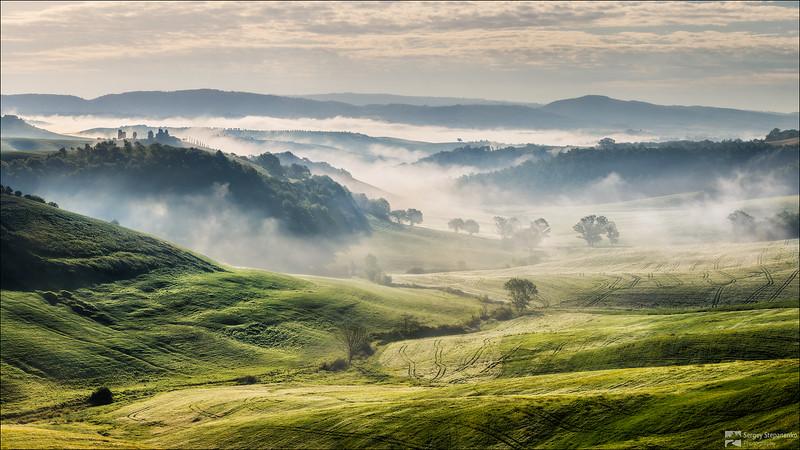 Foggy Morning | Туманное утро