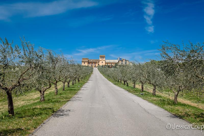 Arnaldo Caprai Winery