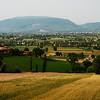 Countryside surrounding Montefalco