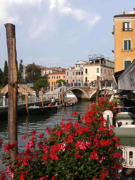 2. Venice Bridge with Bouganvillas