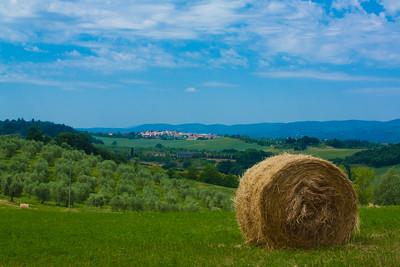 Overlooking Siena, Italy