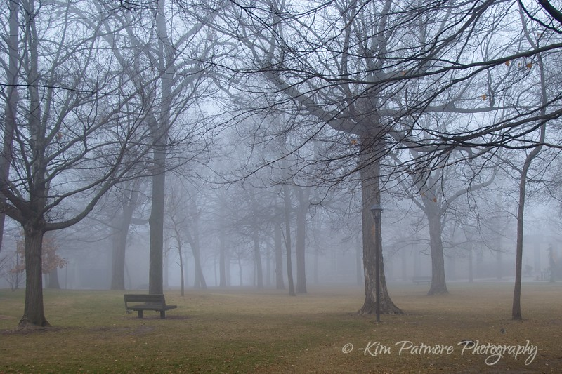 Early morning fog.<br /> Minnesota