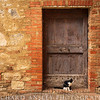 Doors of Italy 5-Tuscany