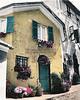 """""""Portofino Profusion,"""" hand colored B&W photo"""