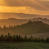 Tuscan Hills of Gold, Italy