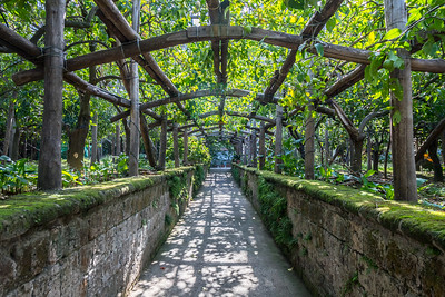 Lemon Grove in Sorrento
